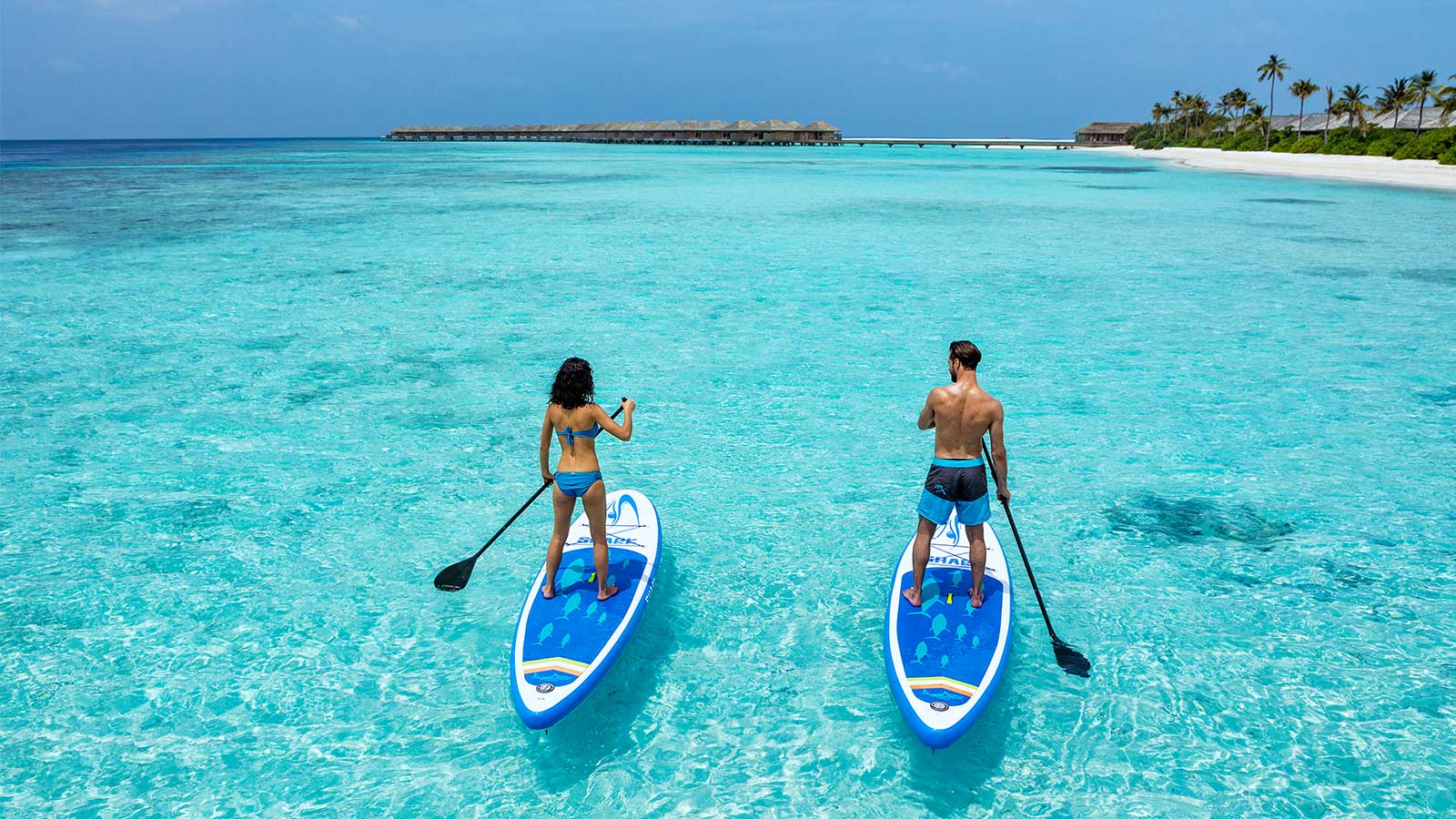 Stand Up Paddle boarding, maldives