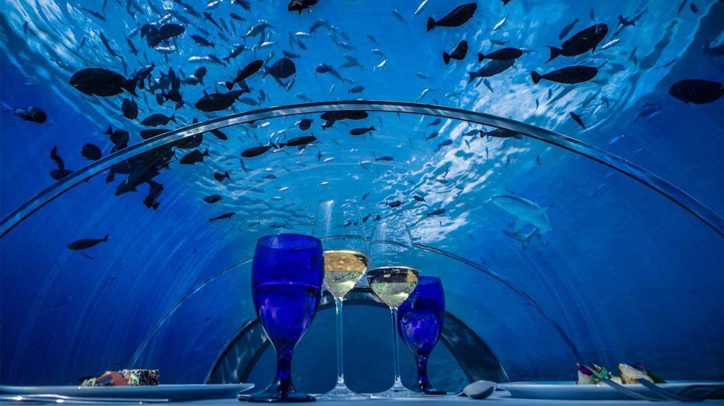 5.8 Unterwasserrestaurant Hurawalhi Maldives