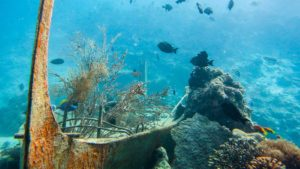 Undersea Restaurant Hurawalhi Maldives Coral Reef