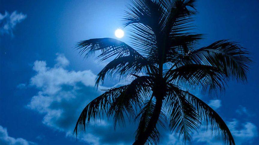 Романтический ужин Полной луны в Куреду