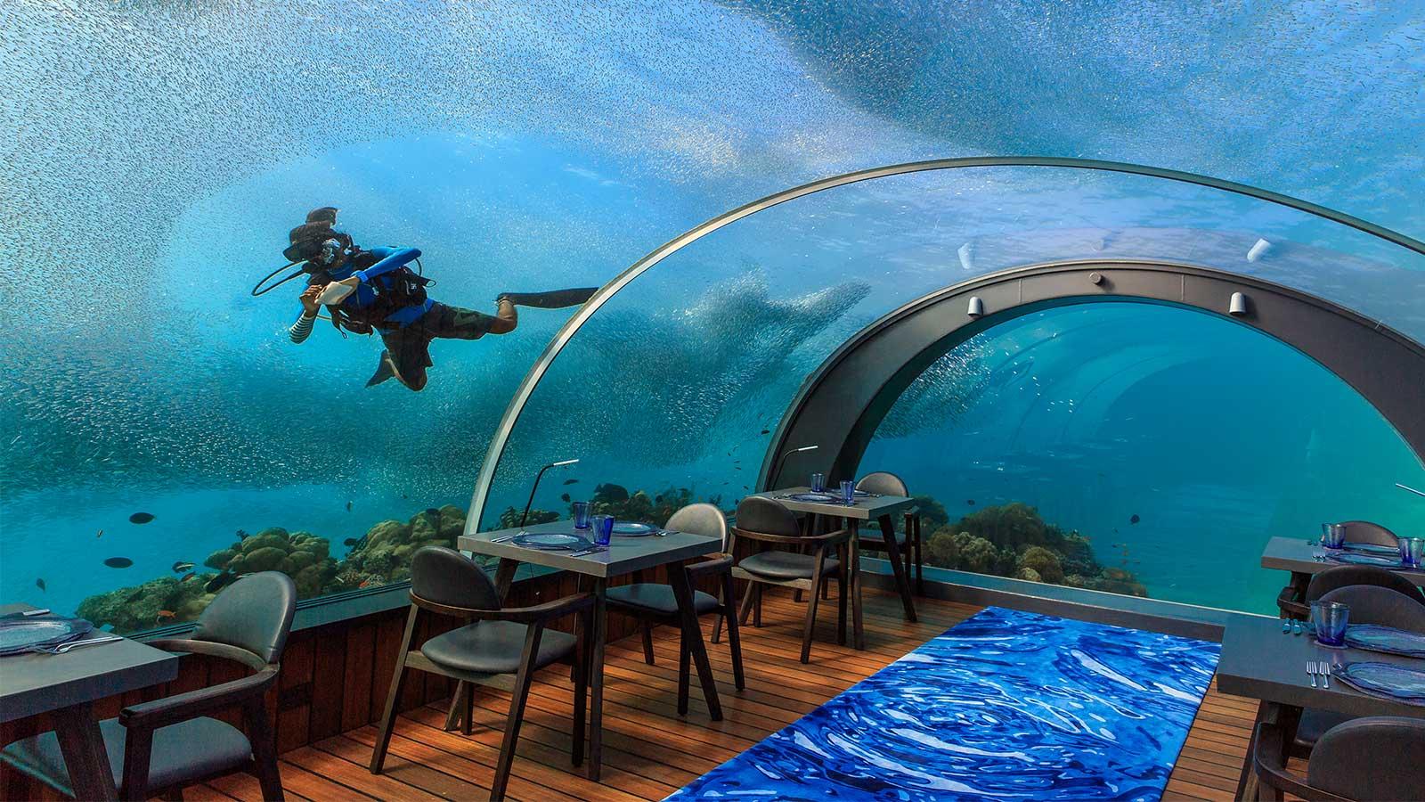 Der begehrteste job der welt 5 8 unterwasserrestaurant - Geschenke an mitarbeiter buchen ...